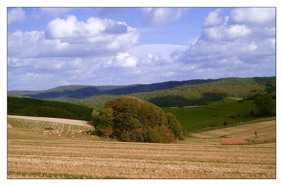 Herbstspaziergang I