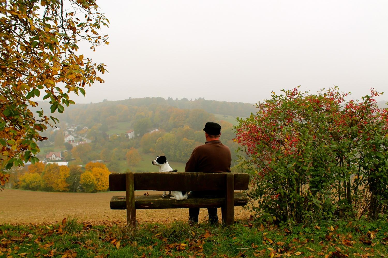 Herbstspaziergang mit dem besten Freund des Menschen!