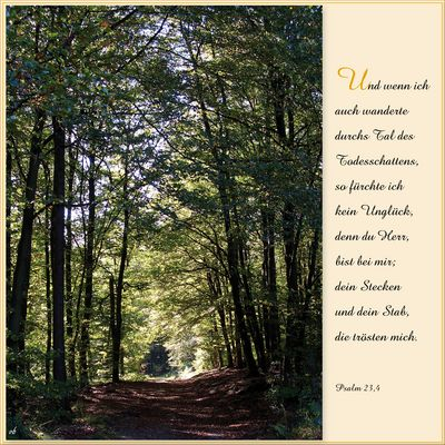 Herbstspaziergang ... Psalm 23,4