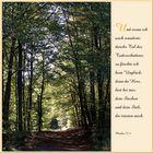 Herbstspaziergang ... Psalm 23,4