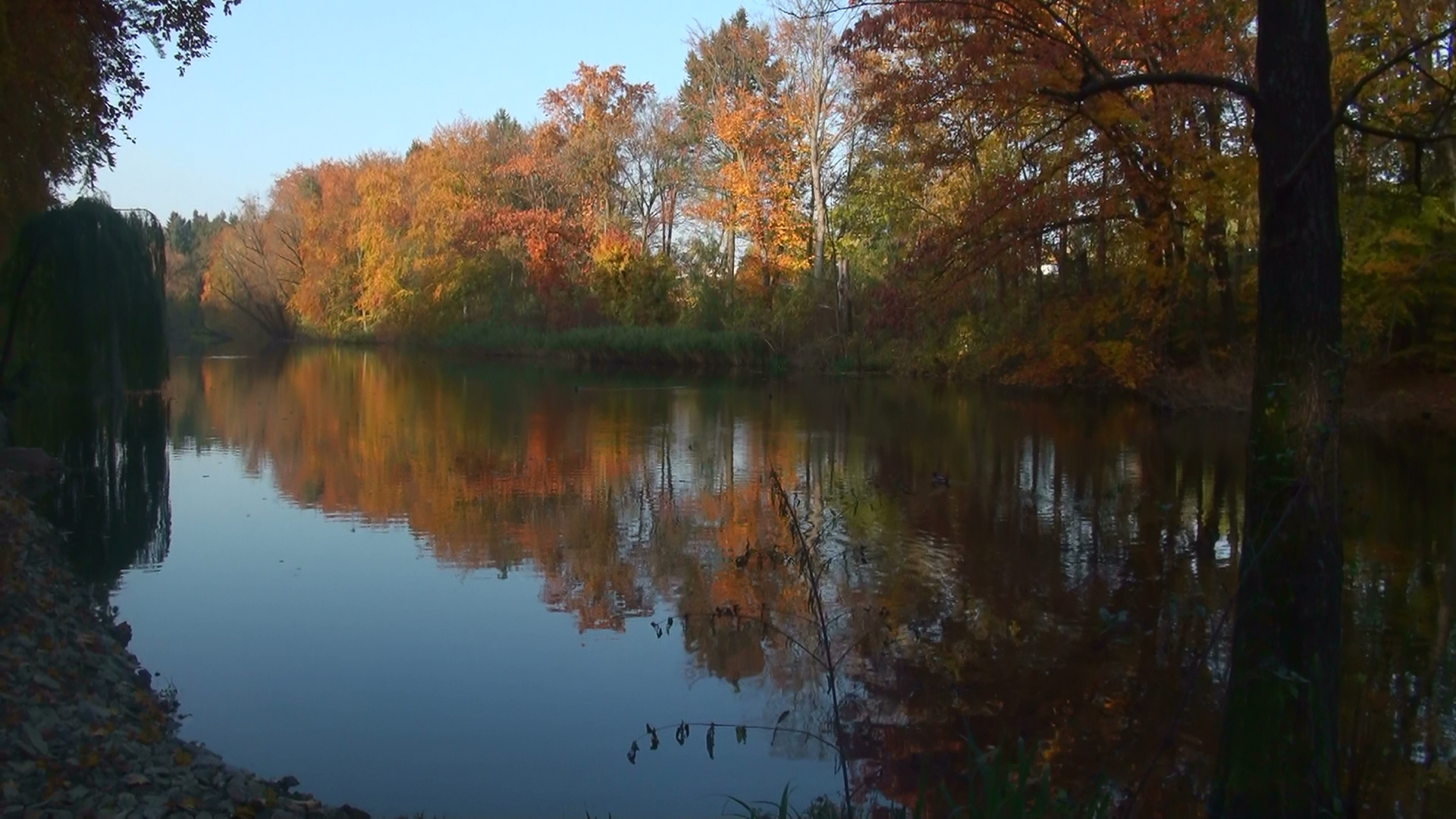 Herbstspiegelung