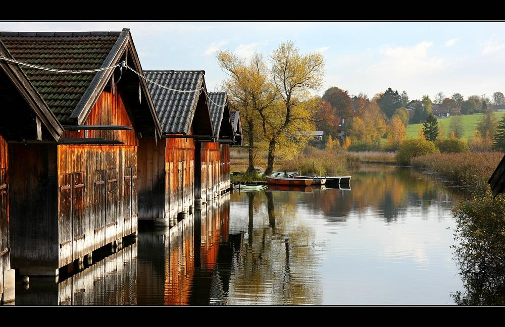 ~~ Herbstspiegelung IV~~