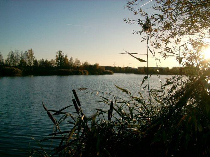 Herbststille am See
