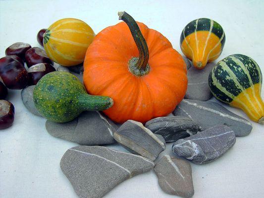 Herbststilleben