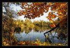 --- Herbststimmung ---