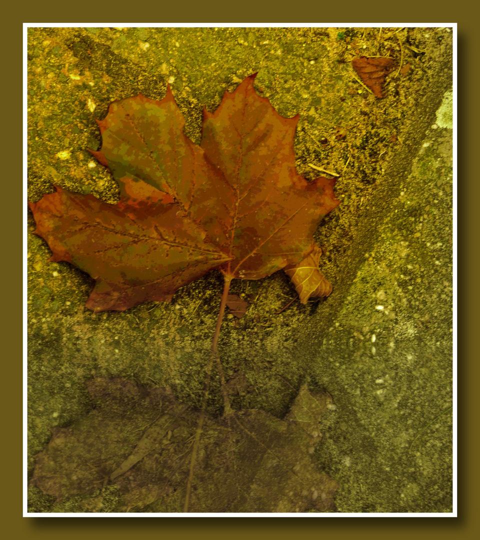 Herbststimmung,