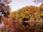Herbststimmung...