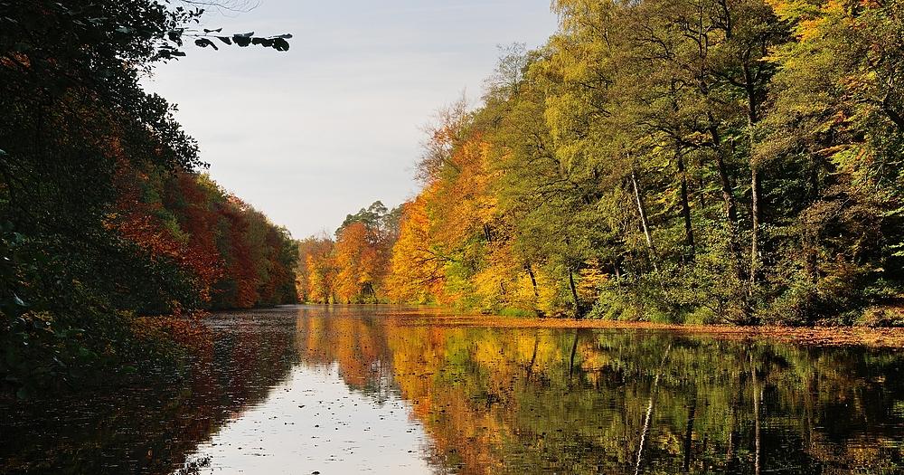 Herbststimmung am Blechhammerweiher.