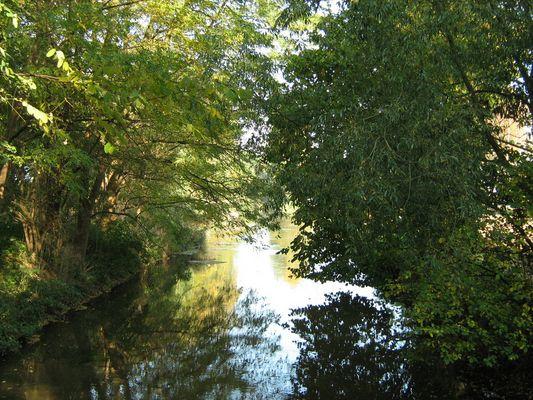 Herbststimmung am Boker Kanal (bei Delbrück)