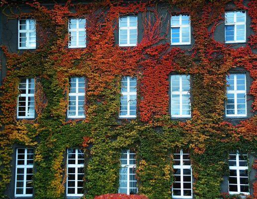Herbststimmung am Rathaus Spandau