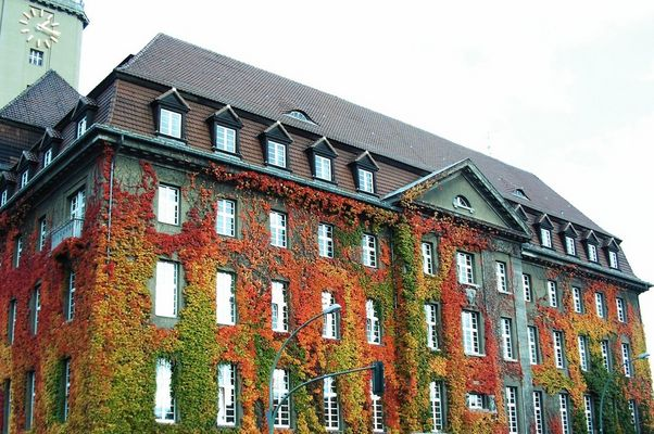 Herbststimmung am Rathaus Spandau II