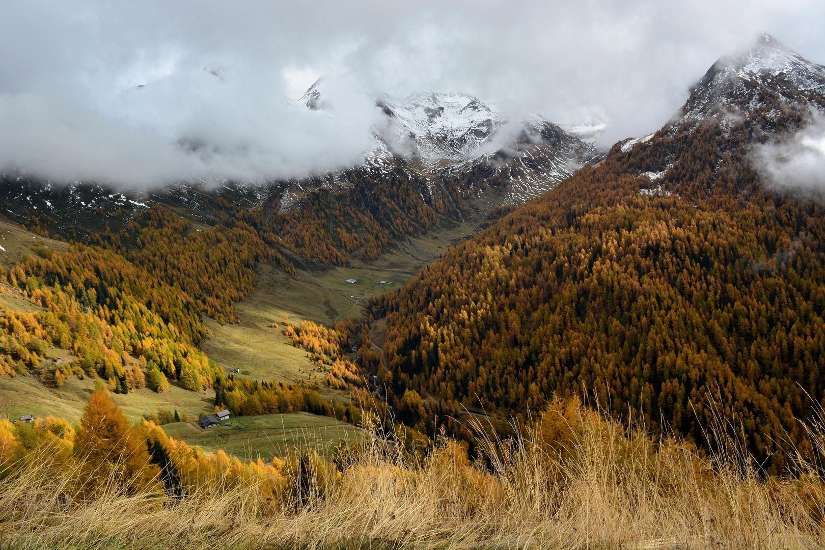 Herbststimmung am Schneeberg Passeiertal Südtirol