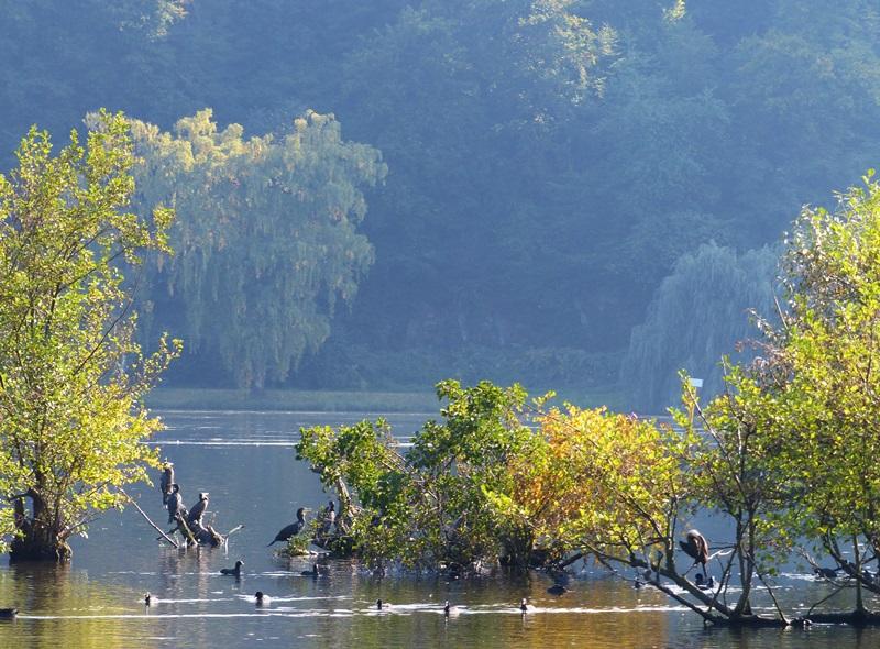 Herbststimmung am See...