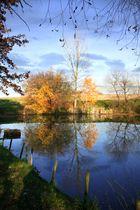 Herbststimmung am Teich