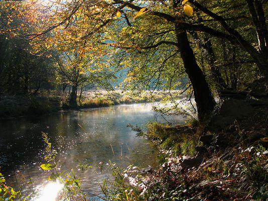 Herbststimmung an der Ahr (Altenahr)