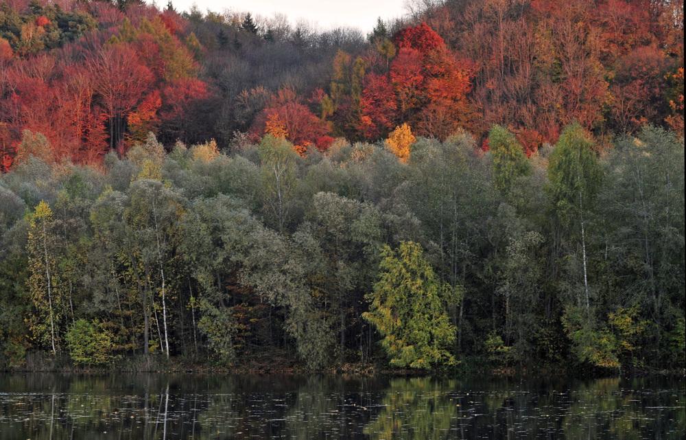 Herbststimmung an der Gretlmühle II