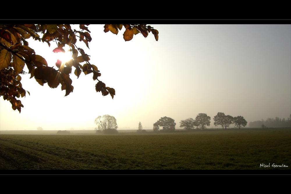 Herbststimmung - Die Erste
