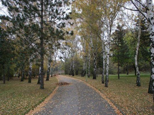 Herbststimmung im Donaupark in Wien
