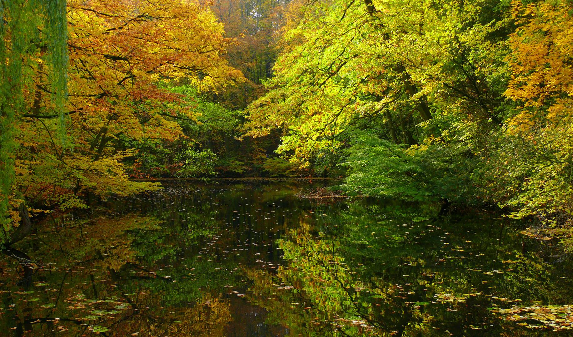 Herbststimmung im Schloßpark Ulenburg