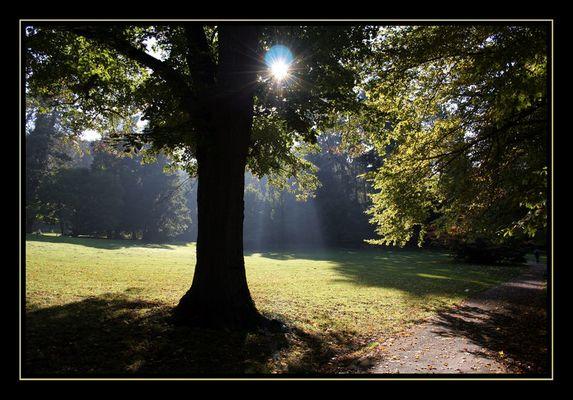 Herbststimmung im von Halfern-Park