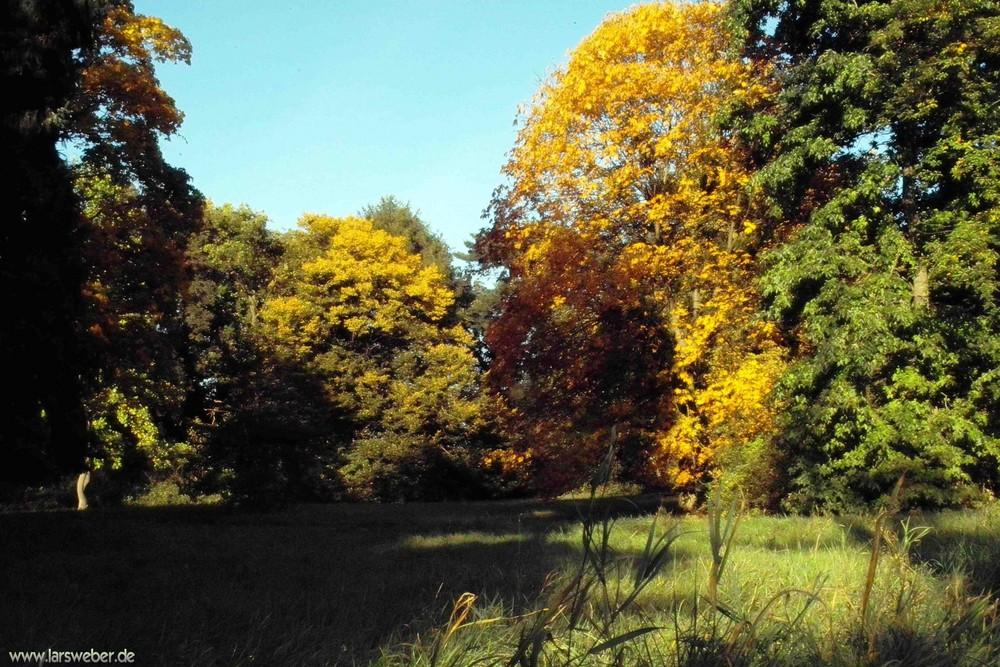 Herbststimmung im Wörlitzer Park