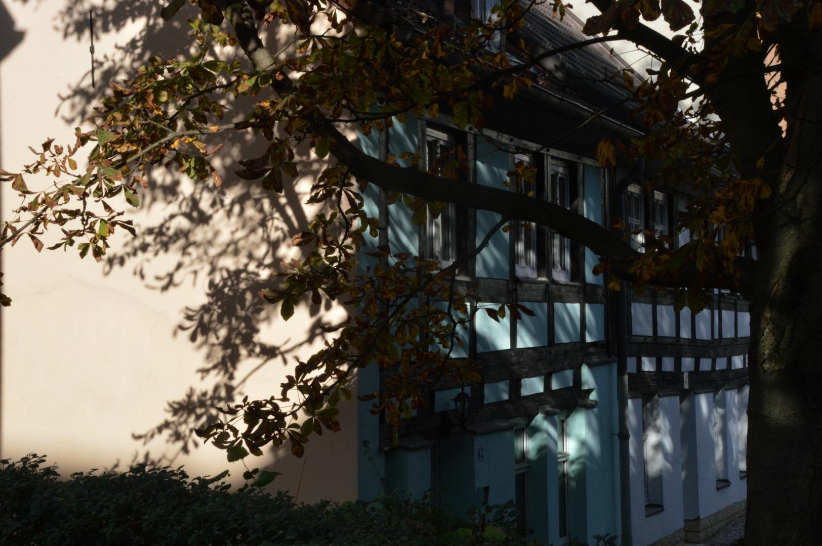 Herbststimmung in Berlin Spandau