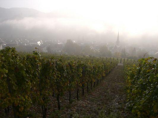 Herbststimmung in Bernkastel-Kues