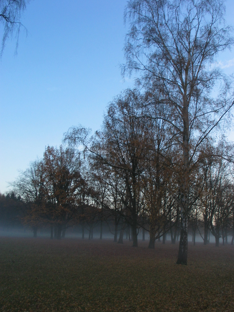 Herbststimmung in den Rehbergen