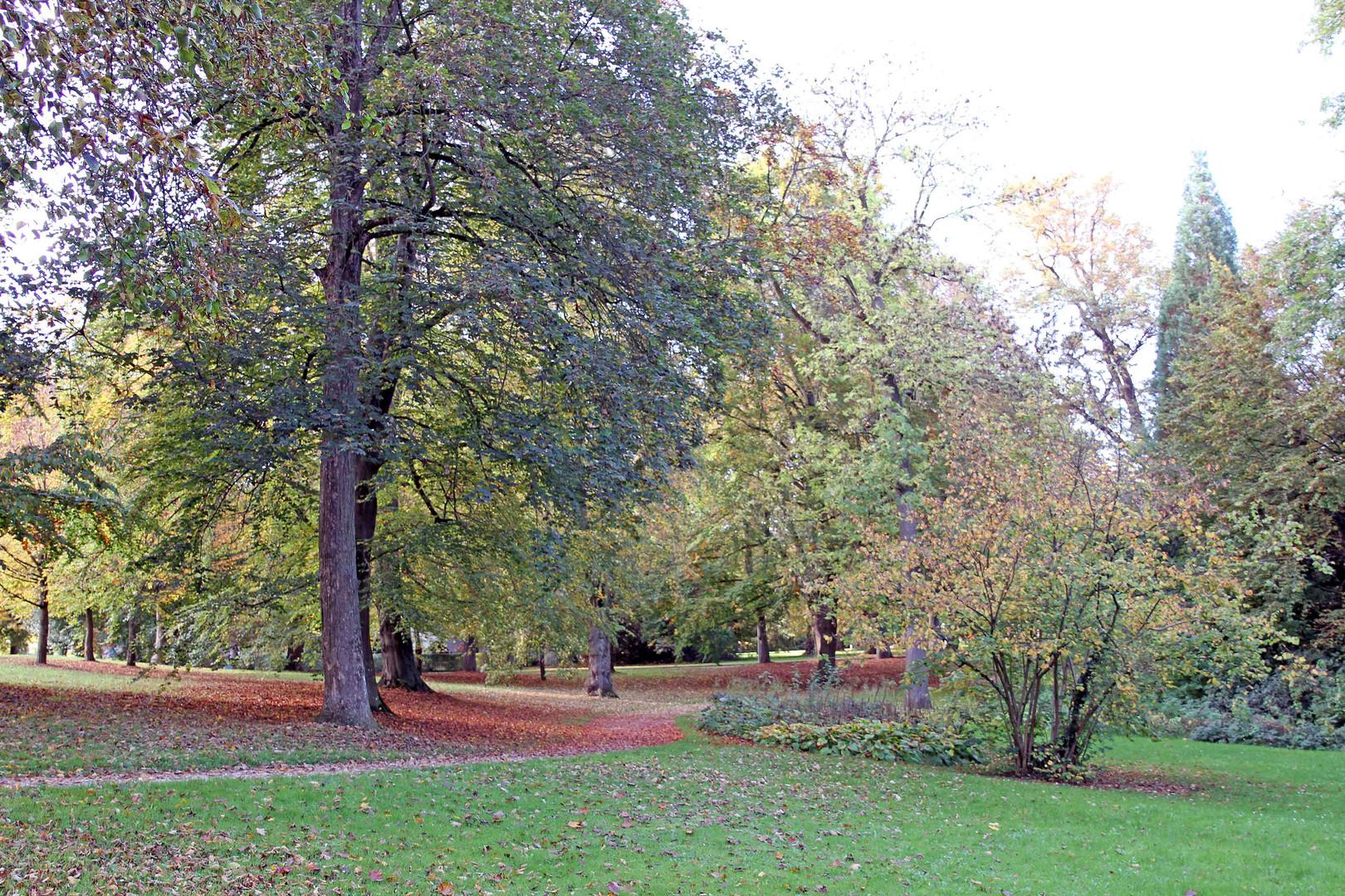 Herbststimmung in der Ulmer Friedrichsau 2