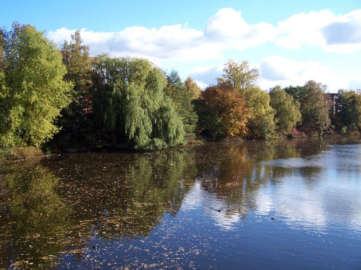 Herbststimmung in Hamburg Ohlsdorf
