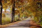 Herbststimmung in Löhne