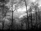 Herbststimmung in Wittgenstein
