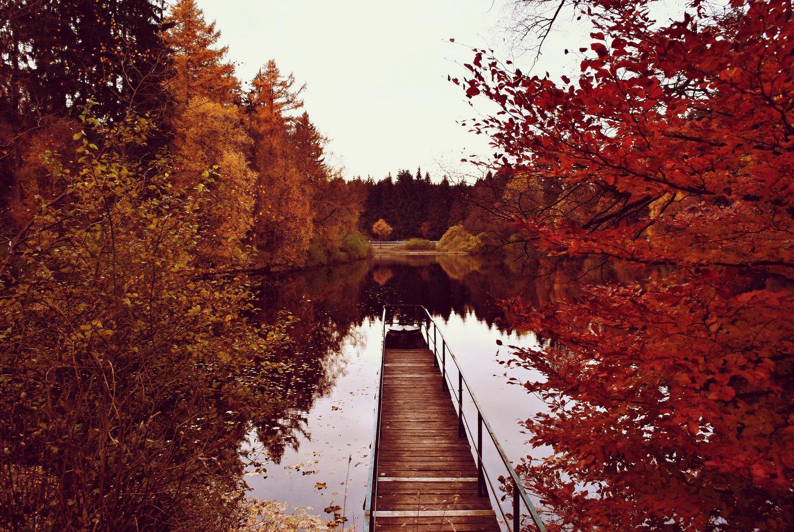 Herbststimmung - Neuer Teich