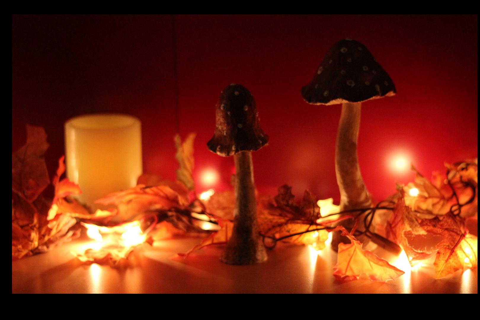 Herbststimmung zuhause