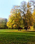 Herbststimmungen (6)