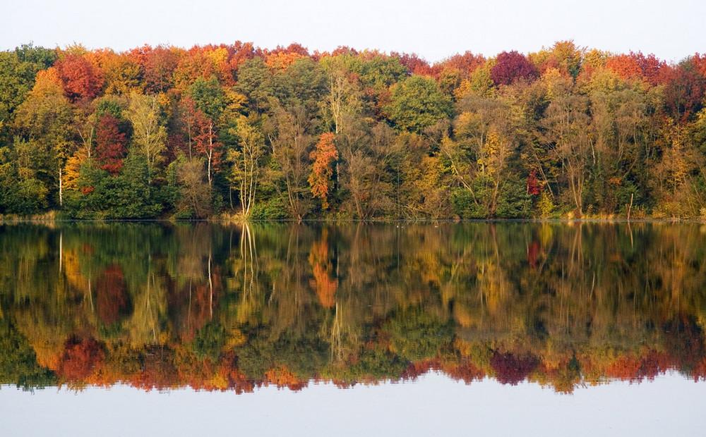 Herbstsymmetrie