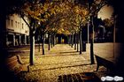 Herbsttag...