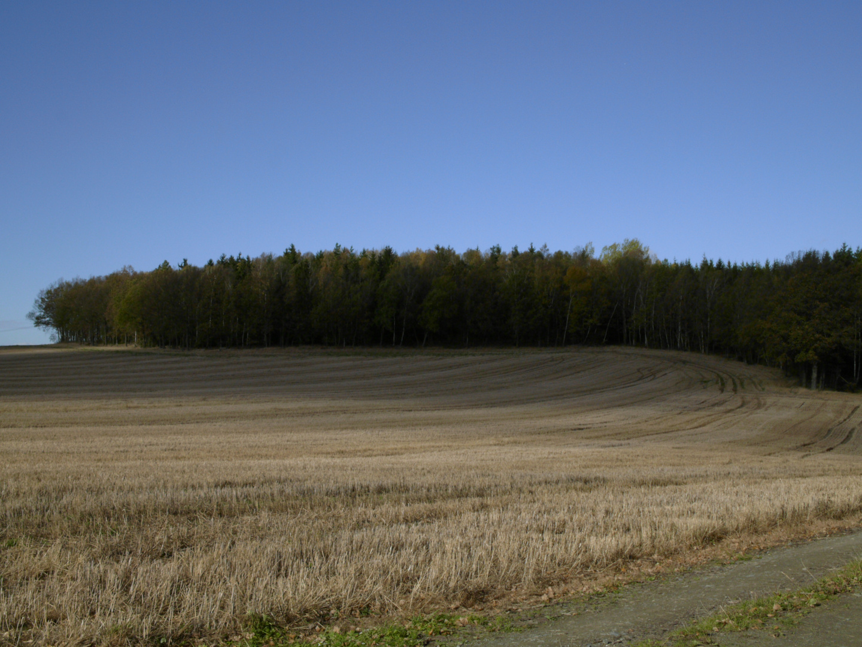Herbsttag am Göltzschtal 2013