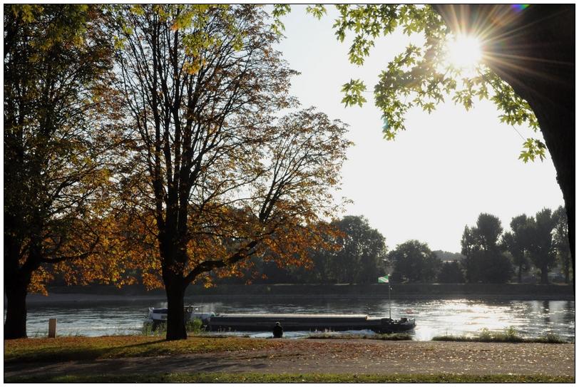 Herbsttag am Rhein bei Mannheim