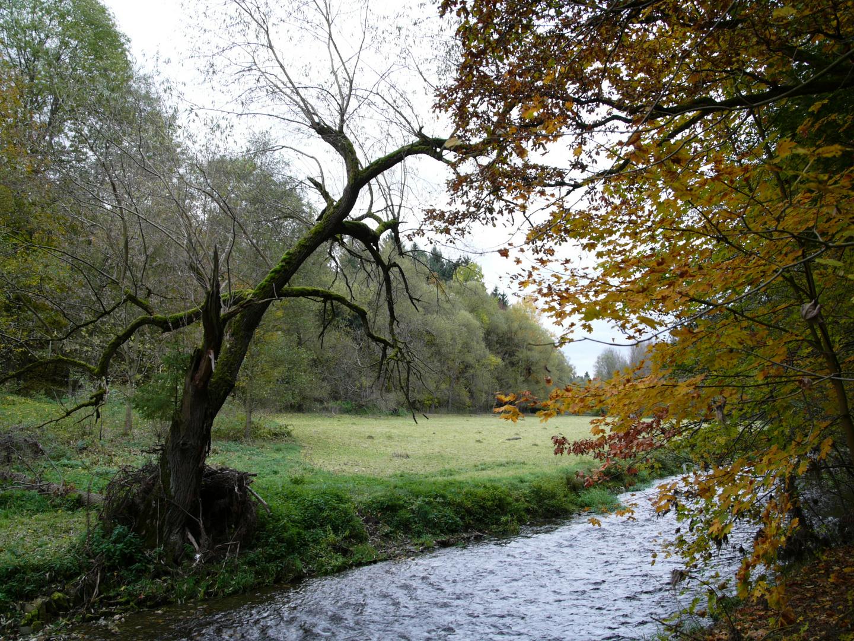 Herbsttag an der Göltzsch bei Mylau