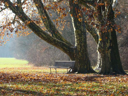 Herbsttag im Schlosspark Laxenburg