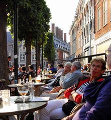 Herbsttag in Haarlem