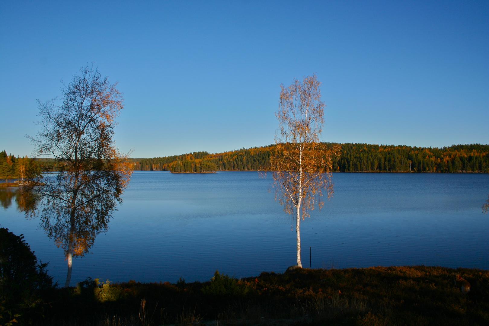 Herbsttag in Schweden II