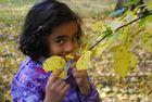 Herbsttag mit Josefine
