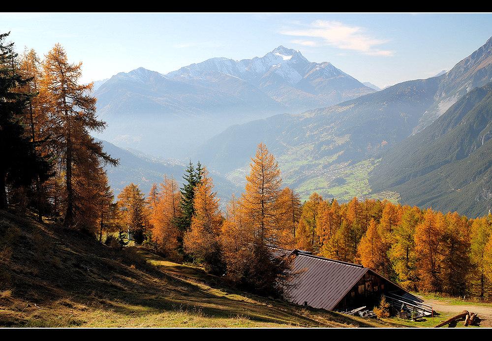 ~~~ Herbsttage III ~~~