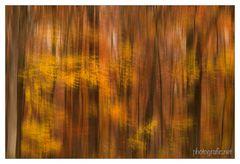 Herbsttanz