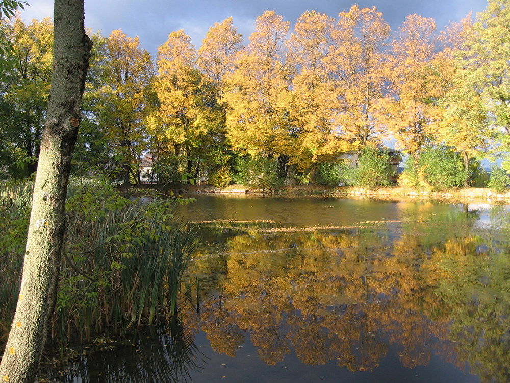 Herbstteich