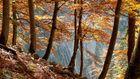 Herbsttour