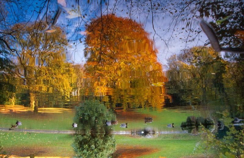 Herbstträumerei