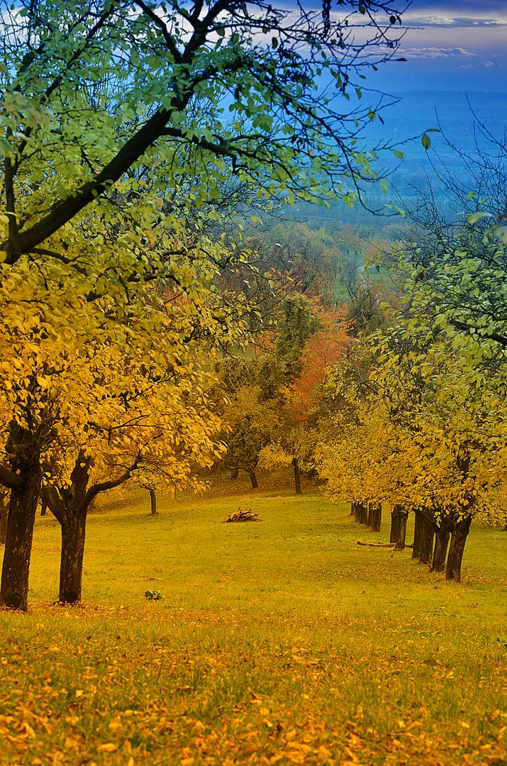 """""""Herbsttraum"""""""